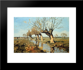 Pollard Willow At The Side Of The Broo: Modern Black Framed Art Print by Cornelis Vreedenburgh
