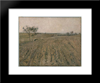 Warm Evening, Templestowe: Modern Black Framed Art Print by David Davies