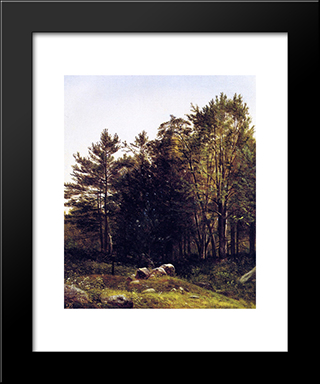 A Study Near Tamworth, New Hampshire: Modern Black Framed Art Print by David Johnson