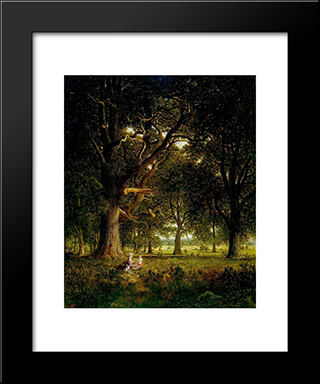 In The Forest: Modern Black Framed Art Print by David Johnson