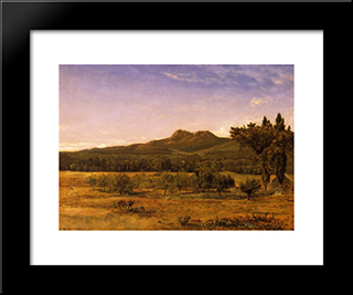 Mount Chocorua, New Hampshire: Modern Black Framed Art Print by David Johnson