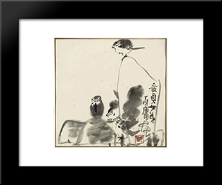 Birds And Rocks: Modern Black Framed Art Print by Ding Yanyong