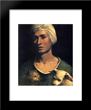 Portrait Of A Young Man With A Dog And A Cat: Modern Black Framed Art Print by Dosso Dossi