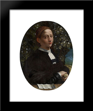 Portrait Of A Youth, Probably Lucrezia Borgia: Modern Black Framed Art Print by Dosso Dossi