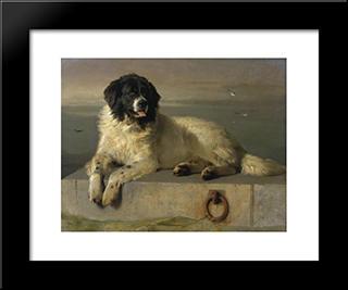 A Distinguished Member Of The Humane Society: Modern Black Framed Art Print by Edwin Henry Landseer