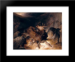 Deer And Deer Hounds In A Mountain Torrent: Modern Black Framed Art Print by Edwin Henry Landseer