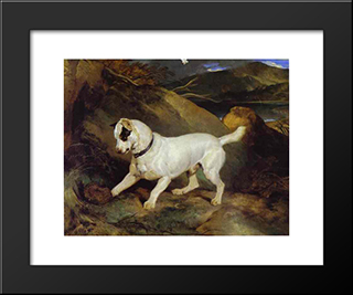 Jocko With A Hedgehog: Modern Black Framed Art Print by Edwin Henry Landseer
