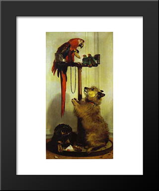 Macaw, Love Birds, Terrier, And Spaniel Puppies, Belonging To Her Majesty: Modern Black Framed Art Print by Edwin Henry Landseer