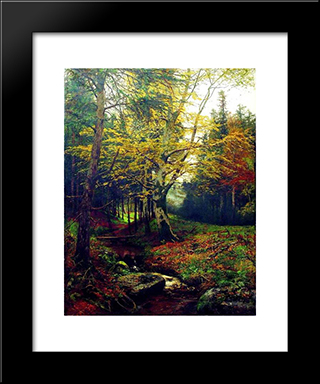 Creek In The Woods: Modern Black Framed Art Print by Efim Volkov