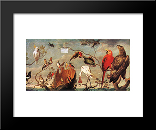 Concert Of Birds: Modern Black Framed Art Print by Frans Snyders