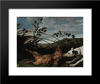Greyhound Catching A Young Wild Boar: Modern Black Framed Art Print by Frans Snyders