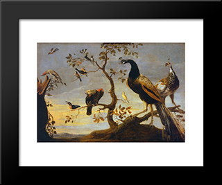 Group Of Birds Perched On Branches: Modern Black Framed Art Print by Frans Snyders