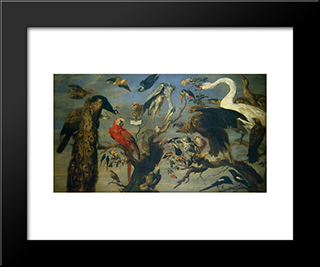 The Bird'S Concert: Modern Black Framed Art Print by Frans Snyders