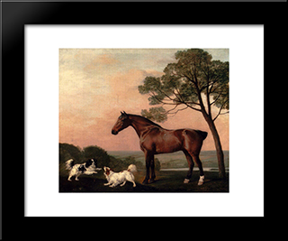 A Bay Hunter With Two Spaniels: Modern Black Framed Art Print by George Stubbs