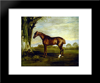 A Chestnut Racehorse: Modern Black Framed Art Print by George Stubbs