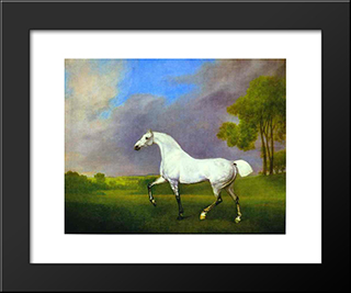 A Grey Horse: Custom Black Wood Framed Art Print by George Stubbs