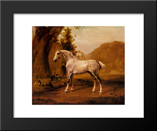 A Grey Stallion In A Landscape: Custom Black Wood Framed Art Print by George Stubbs