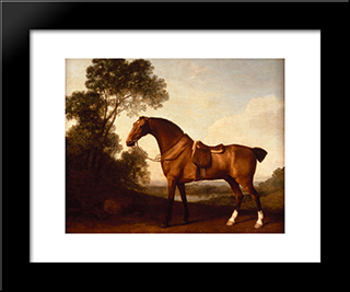 A Saddled Bay Hunter: Custom Black Wood Framed Art Print by George Stubbs