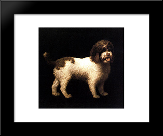 A Water Spaniel: Custom Black Wood Framed Art Print by George Stubbs
