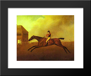Baronet: Modern Black Framed Art Print by George Stubbs