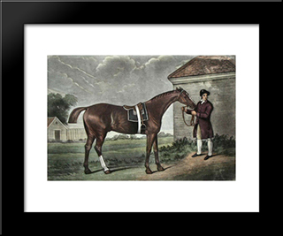 Eclipse: Modern Black Framed Art Print by George Stubbs
