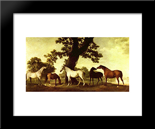 Five Brood Mares: Modern Black Framed Art Print by George Stubbs