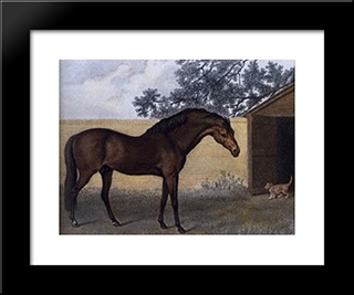 Godolphin Arabian: Modern Black Framed Art Print by George Stubbs