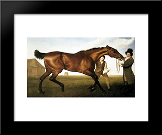 Hambletonian: Custom Black Wood Framed Art Print by George Stubbs