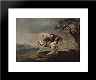 Lion Attacking A Horse: Modern Black Framed Art Print by George Stubbs