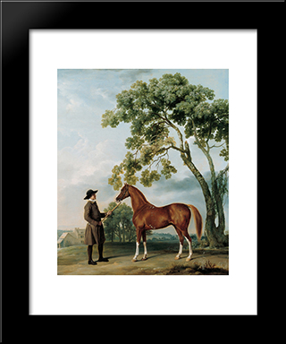 Lord Grosvenor'S Arabian Stallion With A Groom: Modern Black Framed Art Print by George Stubbs