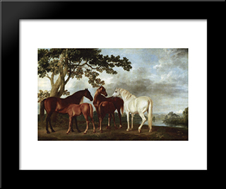 Mares And Foals In A River Landscape: Modern Black Framed Art Print by George Stubbs