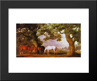 Mares And Foals In A Wooded Landscape: Modern Black Framed Art Print by George Stubbs