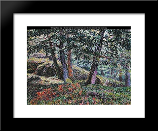 Oaks And Blueberry Bushes: Modern Black Framed Art Print by Georges Lacombe