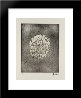 Insects: Modern Black Framed Art Print by Germaine Richier