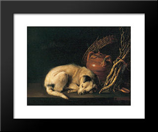 A Sleeping Dog With Terracotta Pot: Modern Black Framed Art Print by Gerrit Dou