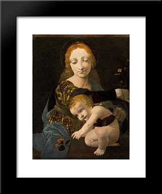 The Virgin And Child (The Madonna Of The Rose): Modern Black Framed Art Print by Giovanni Antonio Boltraffio