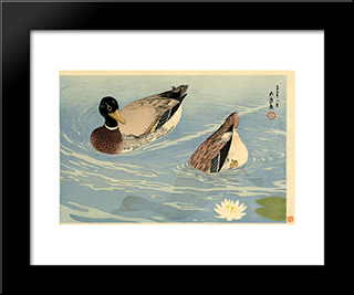 Ducks: Modern Black Framed Art Print by Goyo Hashiguchi