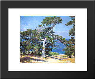 A Carmel Pine: Modern Black Framed Art Print by Guy Rose