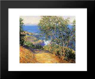 Indian Tobacco Trees, La Jolla: Modern Black Framed Art Print by Guy Rose