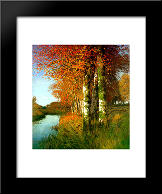 Birken Am Moorgraben: Modern Black Framed Art Print by Hans am Ende