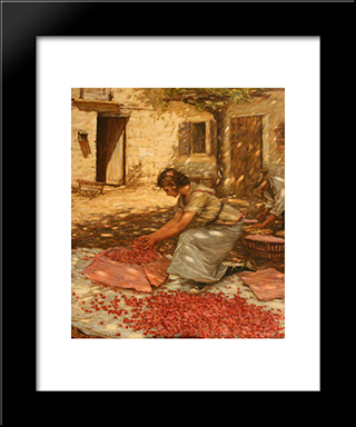 Packing Cherries In Provence, France: Modern Black Framed Art Print by Henry Herbert La Thangue