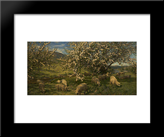 Apple Blossoms In The Upper Wye: Modern Black Framed Art Print by Henry William Banks Davis