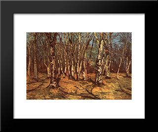 Beech Forest: Modern Black Framed Art Print by Ion Andreescu