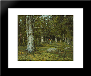In The Forest: Modern Black Framed Art Print by Ion Andreescu