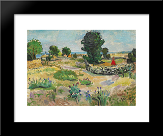 On The Coast: Modern Black Framed Art Print by Ion Tuculescu