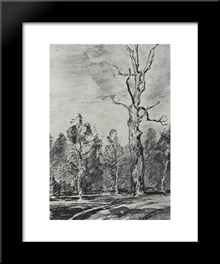 A Dry Tree By The Road: Modern Black Framed Art Print by Isaac Levitan