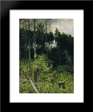 Aspen Spinny. A Gray Day.: Modern Black Framed Art Print by Isaac Levitan