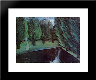On The Shore Of Harta Pond: Modern Black Framed Art Print by Istvan Nagy