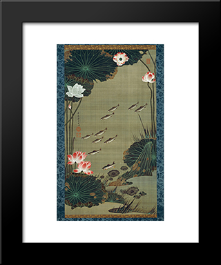 Lotus Pond And Fish: Modern Black Framed Art Print by Ito Jakuchu