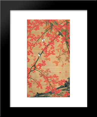 Maple Tree And Small Birds: Modern Black Framed Art Print by Ito Jakuchu
